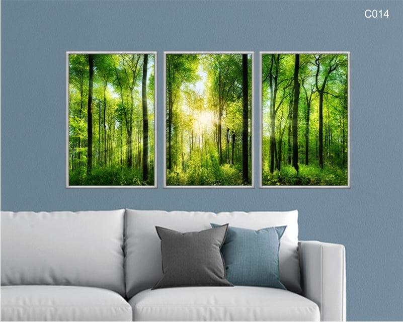 Conjunto de quadros -  bosque raio de sol