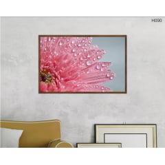 Quadro Decorativo flor rosa gerbera macro