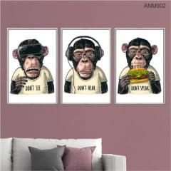 KIT 3 QUADROS DECORATIVOS - DON´T SEE, DON´T HEAR, DON´T SPEAK - MONKEYS - COLORIDO